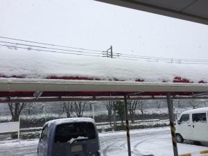 2015.1.30 雪